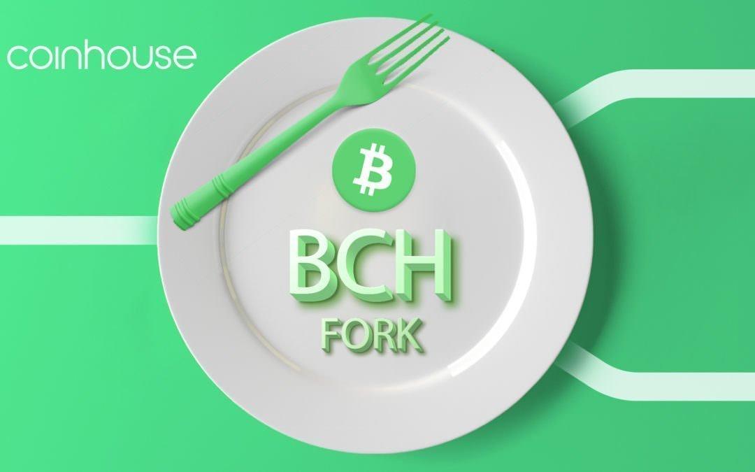 Fork Bitcoin Cash : quelle position adopter ?